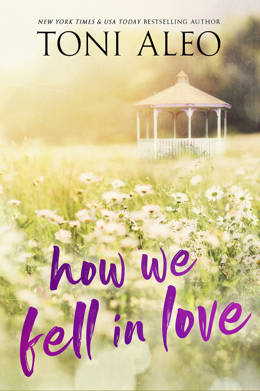 How We Fell In Love by Toni Aleo